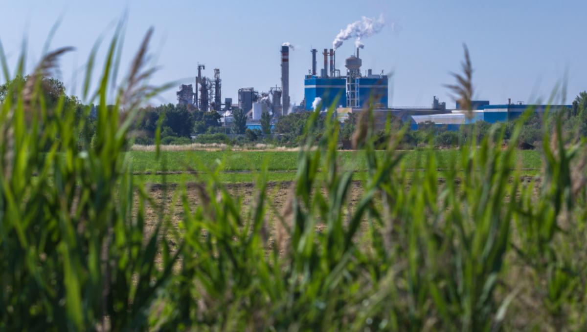 Як визначити рівень забруднення ґрунту нафтопродуктами?